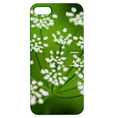 Queen Anne s Lace Apple Iphone 5 Hardshell Case With Stand by Siebenhuehner