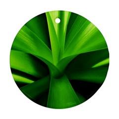 Yucca Palm  Round Ornament (two Sides) by Siebenhuehner