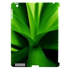 Yucca Palm  Apple Ipad 3/4 Hardshell Case (compatible With Smart Cover) by Siebenhuehner