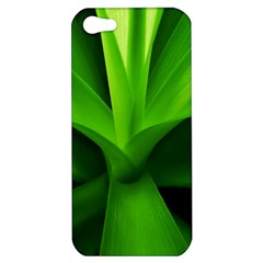 Yucca Palm  Apple Iphone 5 Hardshell Case by Siebenhuehner