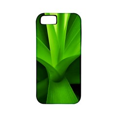 Yucca Palm  Apple Iphone 5 Classic Hardshell Case (pc+silicone) by Siebenhuehner