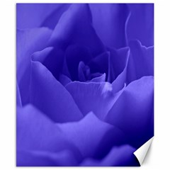 Rose Canvas 8  X 10  (unframed) by Siebenhuehner