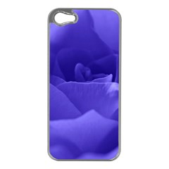 Rose Apple Iphone 5 Case (silver) by Siebenhuehner