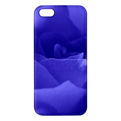 Rose Iphone 5s Premium Hardshell Case by Siebenhuehner