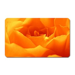 Rose Magnet (rectangular) by Siebenhuehner