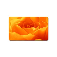 Rose Magnet (name Card) by Siebenhuehner