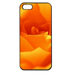Rose Apple Iphone 5 Seamless Case (black) by Siebenhuehner