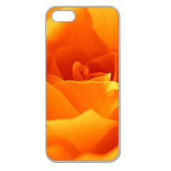 Rose Apple Seamless Iphone 5 Case (clear) by Siebenhuehner