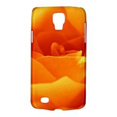 Rose Samsung Galaxy S4 Active (i9295) Hardshell Case by Siebenhuehner