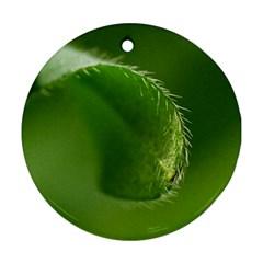 Leaf Round Ornament by Siebenhuehner