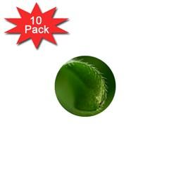 Leaf 1  Mini Button (10 Pack) by Siebenhuehner