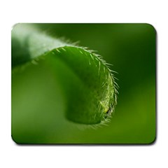 Leaf Large Mouse Pad (rectangle) by Siebenhuehner