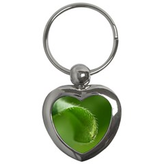 Leaf Key Chain (heart) by Siebenhuehner