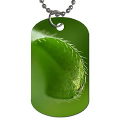 Leaf Dog Tag (two Sided)  by Siebenhuehner