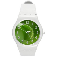 Leaf Plastic Sport Watch (medium) by Siebenhuehner