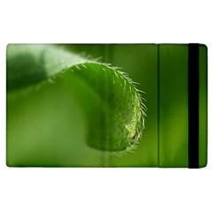 Leaf Apple Ipad 3/4 Flip Case by Siebenhuehner