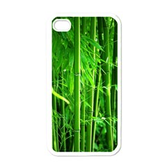 Bamboo Apple Iphone 4 Case (white) by Siebenhuehner