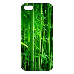 Bamboo Iphone 5 Premium Hardshell Case by Siebenhuehner