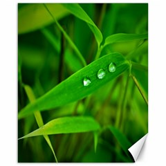 Bamboo Leaf With Drops Canvas 16  X 20  (unframed) by Siebenhuehner
