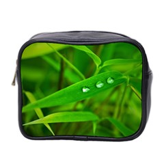 Bamboo Leaf With Drops Mini Travel Toiletry Bag (two Sides) by Siebenhuehner