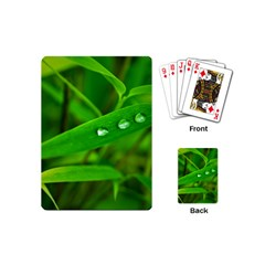 Bamboo Leaf With Drops Playing Cards (mini) by Siebenhuehner