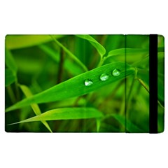 Bamboo Leaf With Drops Apple Ipad 2 Flip Case by Siebenhuehner