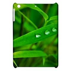 Bamboo Leaf With Drops Apple Ipad Mini Hardshell Case by Siebenhuehner