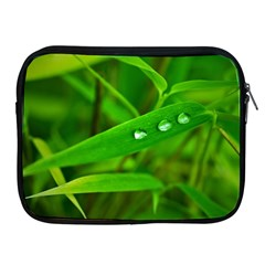 Bamboo Leaf With Drops Apple Ipad 2/3/4 Zipper Case by Siebenhuehner