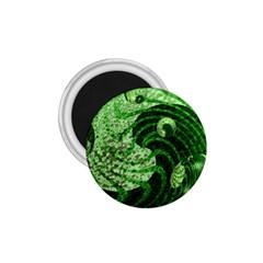 Magic Balls 1 75  Button Magnet by Siebenhuehner
