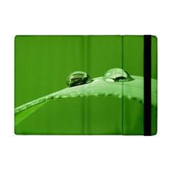 Waterdrops Apple Ipad Mini Flip Case by Siebenhuehner