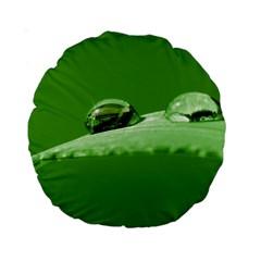 Waterdrops 15  Premium Round Cushion  by Siebenhuehner