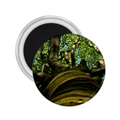 Tree 2 25  Button Magnet by Siebenhuehner