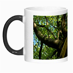 Tree Morph Mug