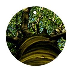 Tree Round Ornament (two Sides) by Siebenhuehner
