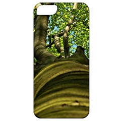 Tree Apple Iphone 5 Classic Hardshell Case by Siebenhuehner