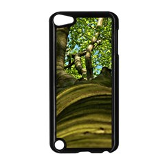 Tree Apple Ipod Touch 5 Case (black) by Siebenhuehner