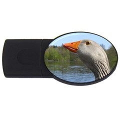 Geese 4gb Usb Flash Drive (oval) by Siebenhuehner