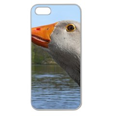 Geese Apple Seamless Iphone 5 Case (clear) by Siebenhuehner