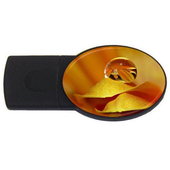 Drops 2GB USB Flash Drive (Oval)