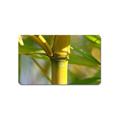 Bamboo Magnet (Name Card) by Siebenhuehner