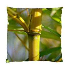 Bamboo Cushion Case (single Sided)  by Siebenhuehner