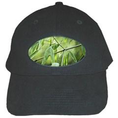 Bamboo Black Baseball Cap by Siebenhuehner