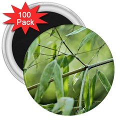 Bamboo 3  Button Magnet (100 Pack) by Siebenhuehner