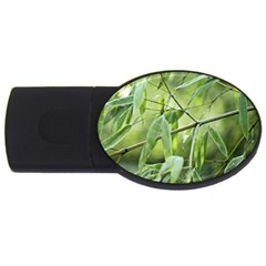 Bamboo 4gb Usb Flash Drive (oval) by Siebenhuehner