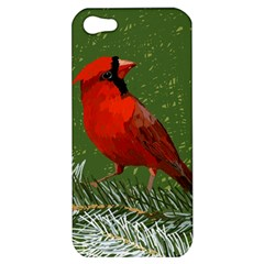 Cardinal Apple Iphone 5 Hardshell Case