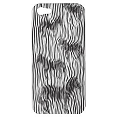 Where s The Zebra? Apple Iphone 5 Hardshell Case by Contest1736674