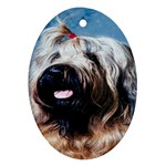 Briard Ornament (Oval)