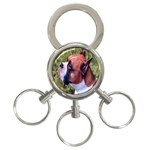 boxer 3-Ring Key Chain
