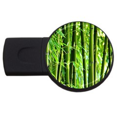 Bamboo 2gb Usb Flash Drive (round) by Siebenhuehner