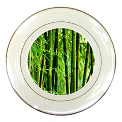 Bamboo Porcelain Display Plate by Siebenhuehner